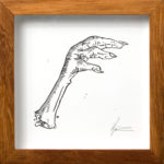HANNO VAN ZYL. Chicken Foot, 2016. Ink, Letratone on paper. 125 x 125mm. Framed